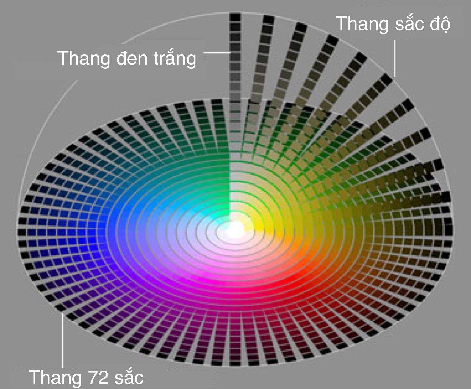 Các hệ màu cơ bản trong so màu